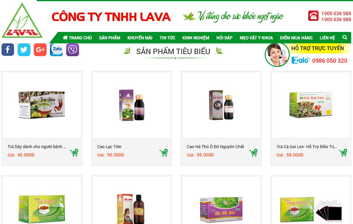 Công ty TNHH LAVA