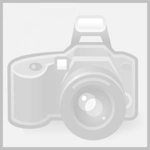 Thiết kế web Biên Hòa uy tín chất lượng chuẩn seo giá rẻ Đột Phá nhất.